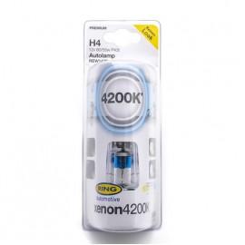 H4 2 Lampade Xenon 4200K Ring